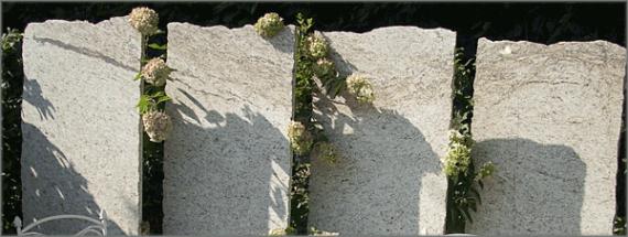 Muschelkalk Krustenplatten