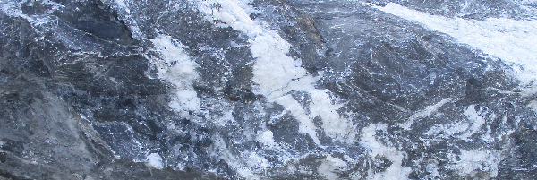 Steinart Alpenkalk